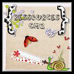 Ressources CM2