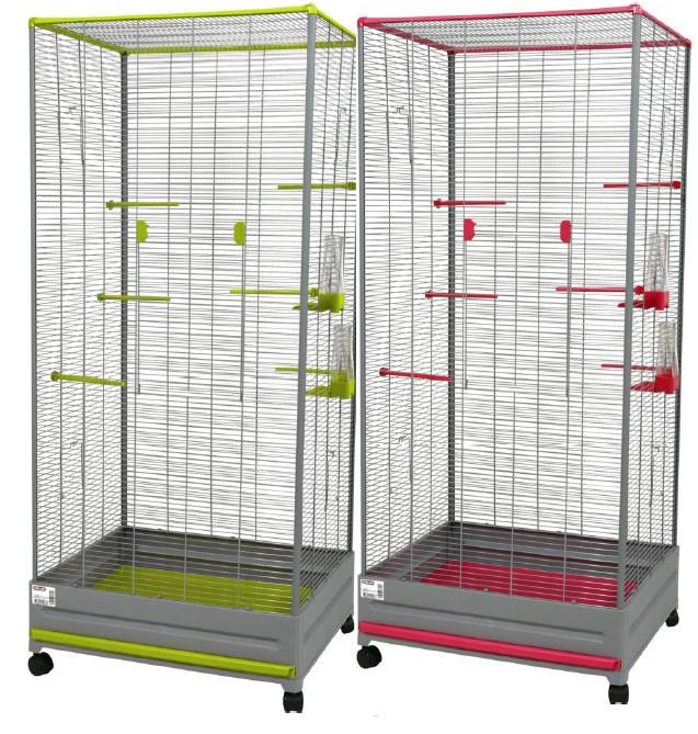 quelles cages quels autres oiseaux g cuneata. Black Bedroom Furniture Sets. Home Design Ideas
