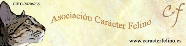 Carácter Felino el foro