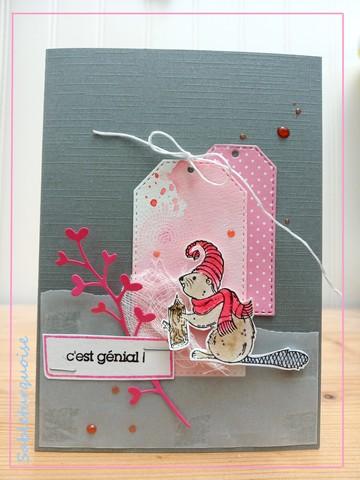 passion Cartes Créatives#614 !