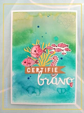 Passion cartes Créatives#645 !