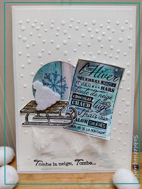 Passion cartes Créatives#675 !