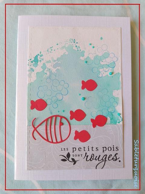 Passion cartes Créatives#684 !