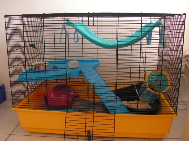 cages pour rats d 39 occasion. Black Bedroom Furniture Sets. Home Design Ideas