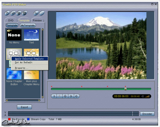 Womble MPEG Video Wizard DVD v5.0.0.109 Multilanguage