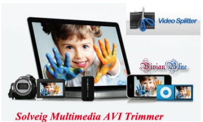 Solveig Multimedia AVI Trimmer 2.0.1008.17 ML Portable