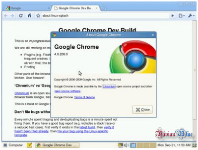 Google Chrome 7.0.503.0 Canary