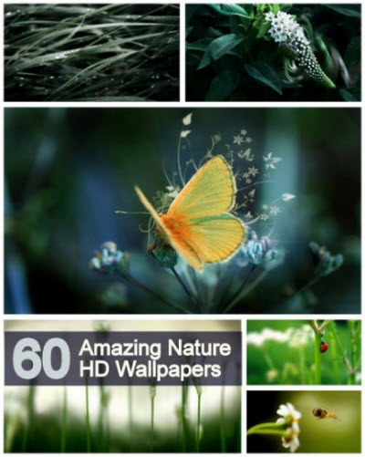 60 Amazing Nature HD Wallpapers