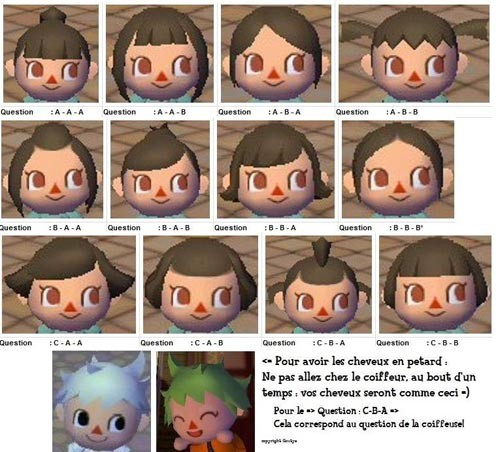 Coupe de cheveux animal crossing let 39 s go to the city - Animal crossing wild world hair salon ...