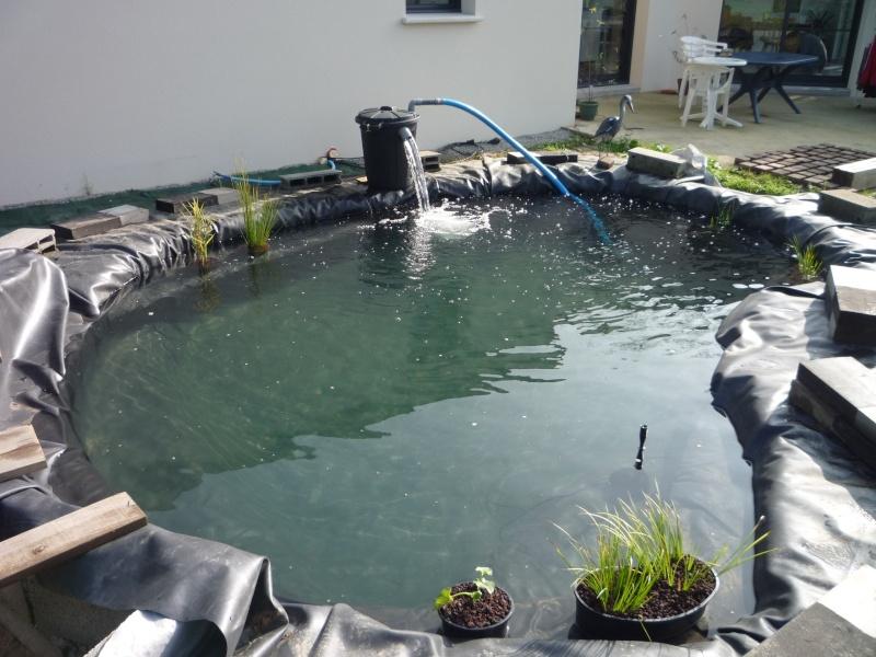 Mon 1er bassin page 2 for Filtre bassin maison