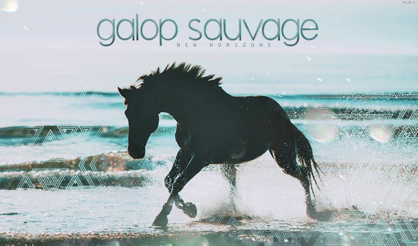 Galop Sauvage